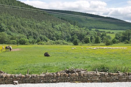 River View, a home from home - Innerleithen