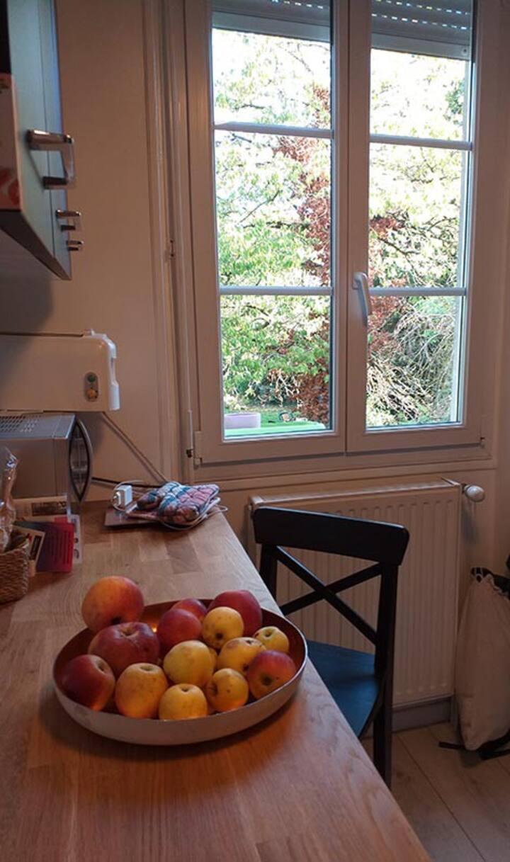 Chambre au calme à Châlons / Verdure et Champagne