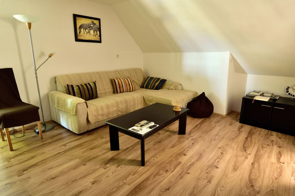 Apartment Lobrovic living room with