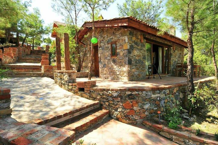 Kayserkaya ''Dibek'' Stone House - Şirince - Xalet