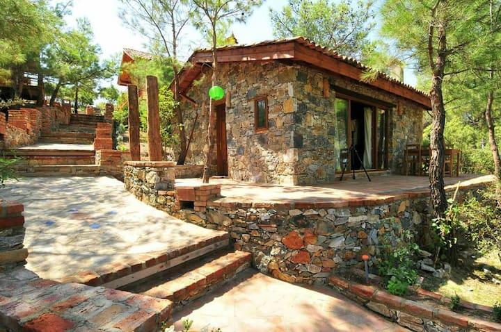Kayserkaya Stone House (Dibek Ev)
