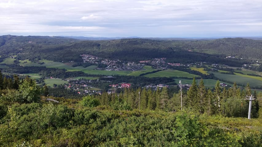 nice view from the top of Varingskollen downhill skisenter 7 min by train/bus