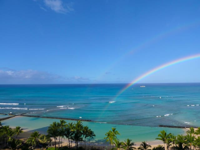 New Reno! Direct Oceanfront @ Waikiki Beach Tower