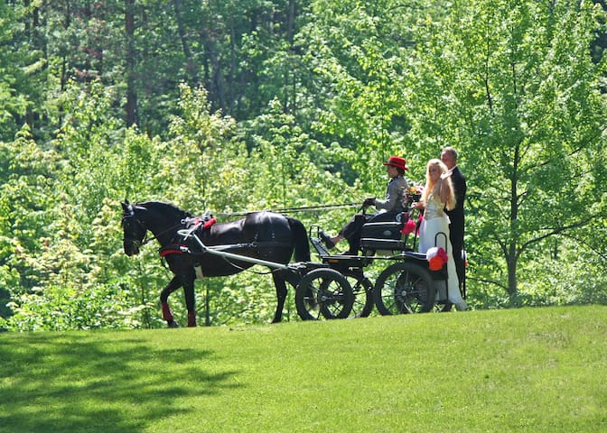 Bride delivered by carriage!