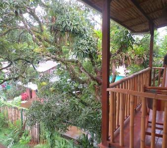 "Garden view BnB ""Romantica"""