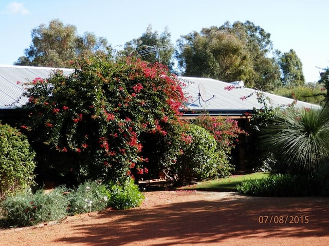 WOOLLYBUSH GUEST HOUSE B & B - Woodridge - Bed & Breakfast