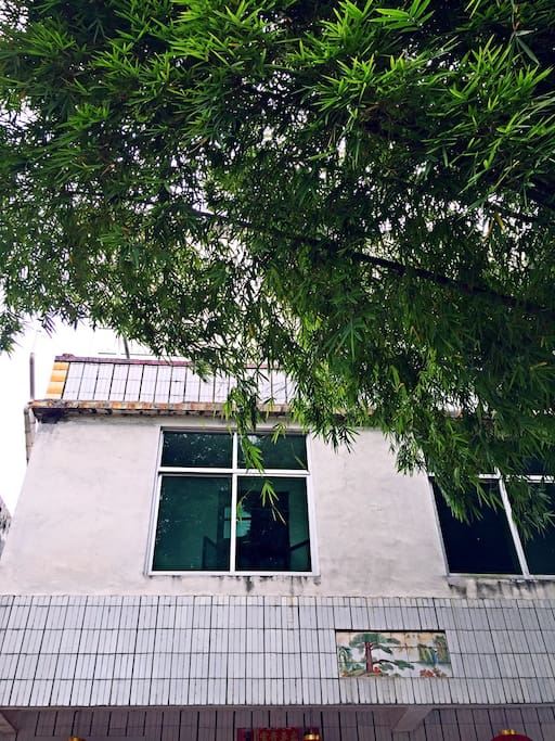 掩映在翠竹丛中的乡村院落!