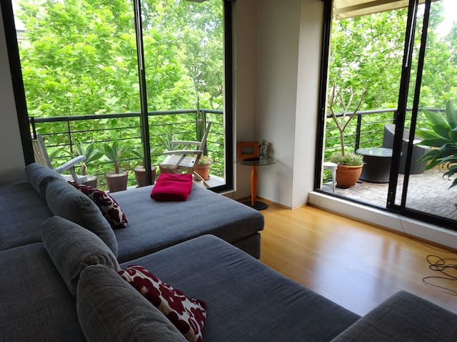 Cosy apartment close to everything - Surry Hills - Appartamento