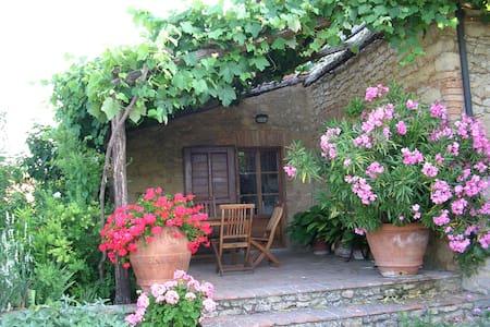 Le Pietraie, Pergola..with garden - Montecastelli Pisano - Pis