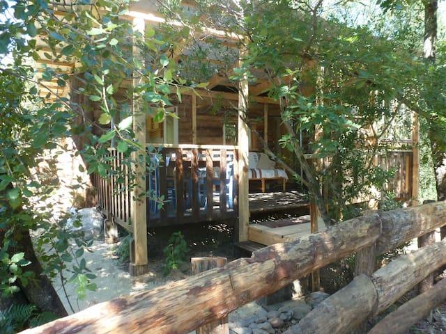 Gîte Cabane Saloon en Ardèche - Malbosc - Houten huisje