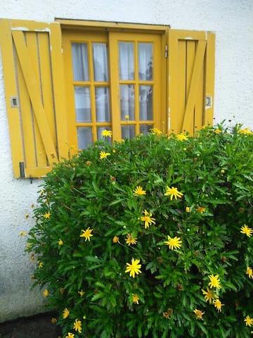 Esmoriz Casa Amarela