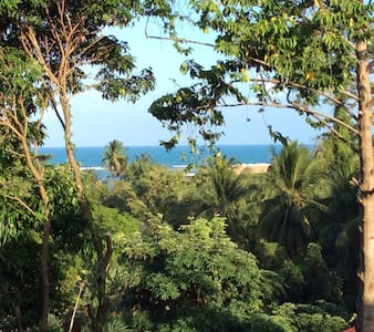 Treetop apartment 250m from beach