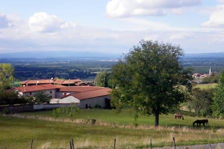 La Martinière  : ancienne ferme - Saint-Cyr-les-Vignes