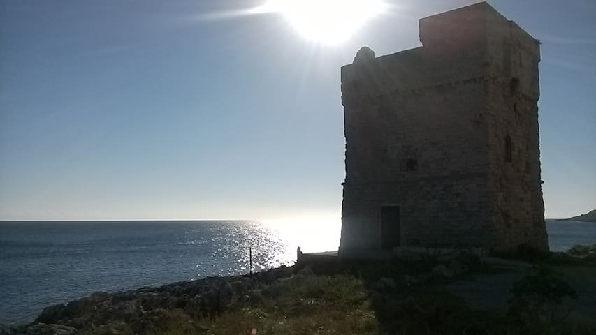 Relax a pochi passi dal mare - Marina Serra - Townhouse