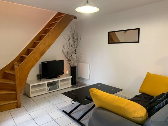 Espace salon avec TV & Console WII
