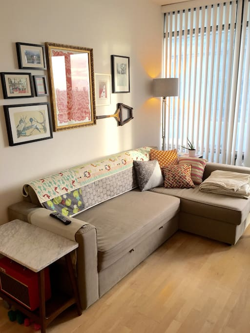 living room modernly furnished - this couch can be pulled out to make a full size comfy bed for additional guest.