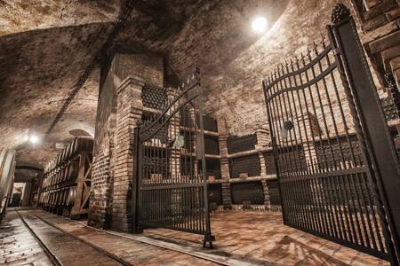 Stari podrum *** - Ilok