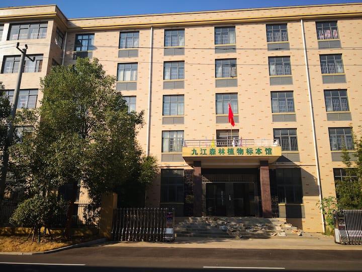 学生庐山社会实践@庐山旅游、提供车辆接送、餐饮,住四人青年公寓背包穷游驴行