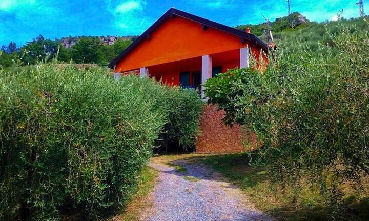 Ca' Fenugia  Stanza Ulivo CITRA 009029-LT-1184