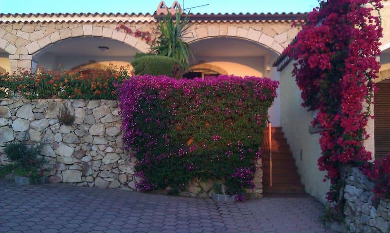 house beautiful sea view - Cannigione - Villa