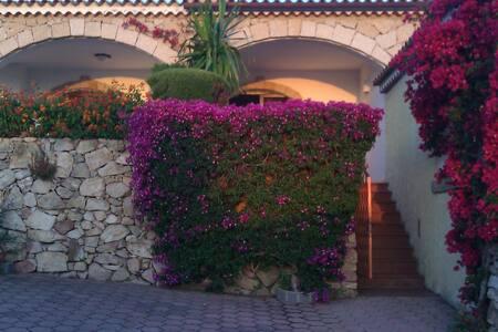house beautiful sea view - Cannigione