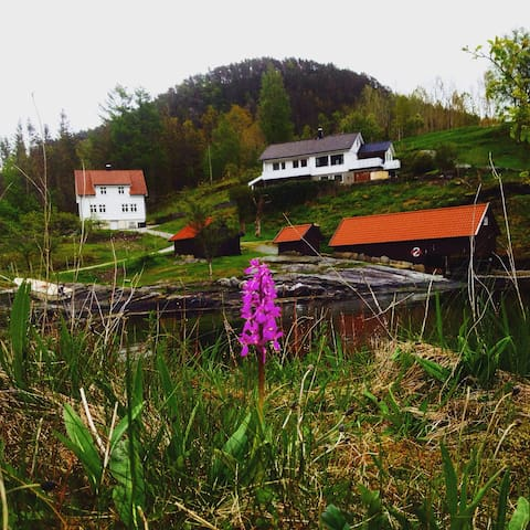 Hus ved sjøen i landlige omgivelser - Vikedal  - House