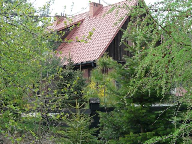 Beskid Niski to jedne z dzikich polskich gór.
