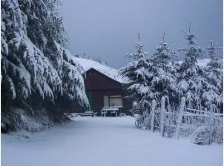 Cabin with Hot Tub in Aberdeenshire