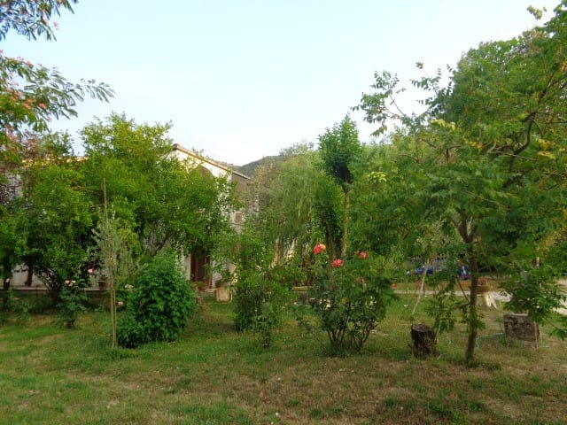 Room in the relaxing countryside - San Giorgio a Liri - House