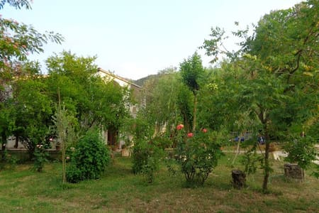 Room in the relaxing countryside - San Giorgio a Liri - Huis