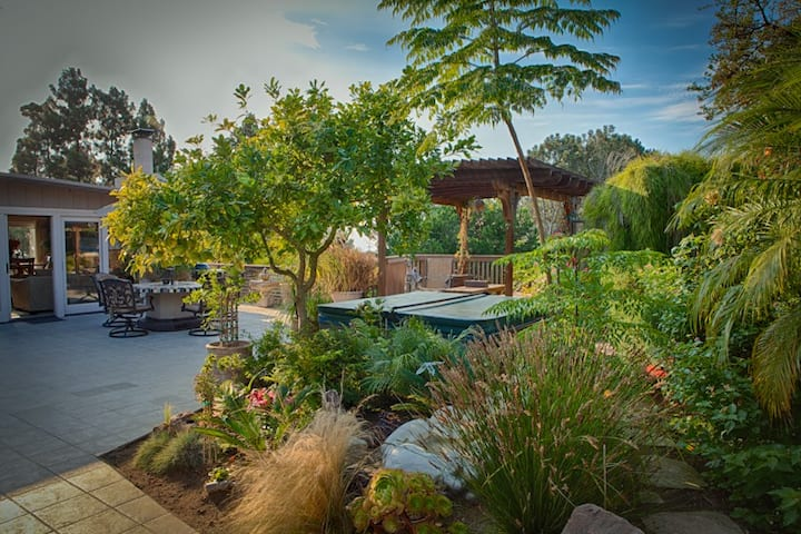 Oceanview, Old Del Mar, remodeled, gorgeous home.