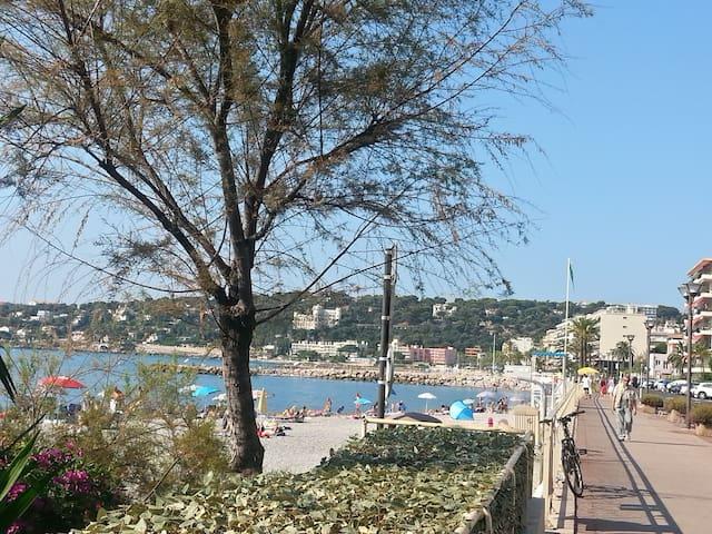 Warm  & cosy. 50 m beach Roquebrune.  2 bedrooms.