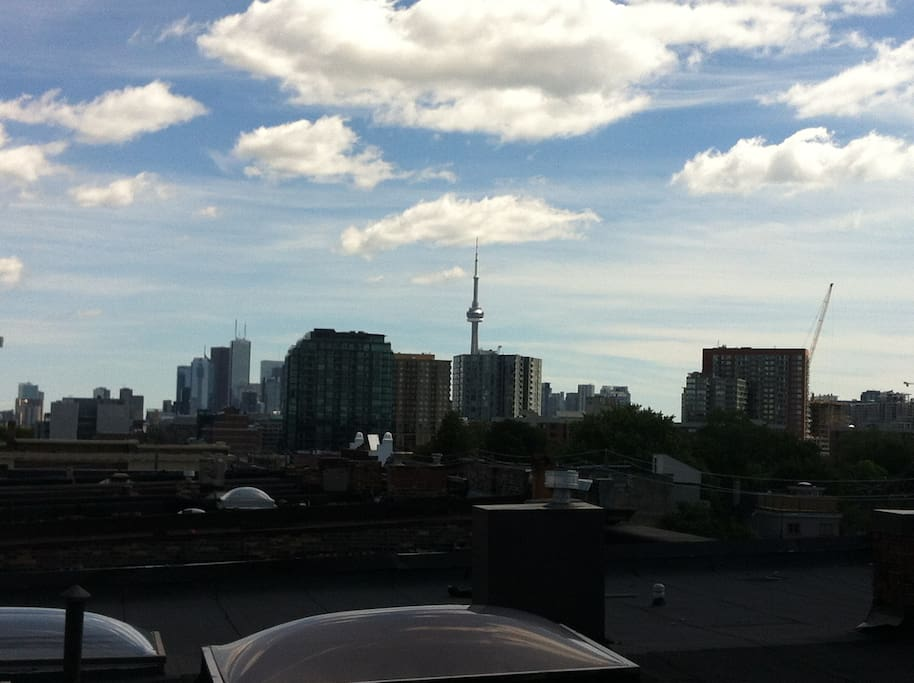 The view from the rooftop patio