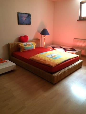 Spacious room in a nice house with - Chéserex - 一軒家