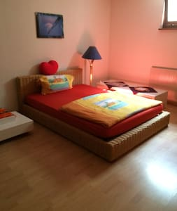 Spacious room in a nice house with - Chéserex