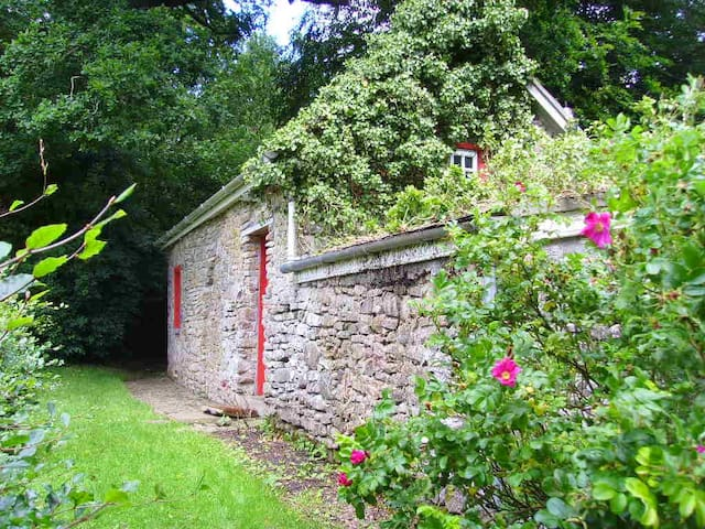 The Writer's Cottage - Mountrath - Hytte