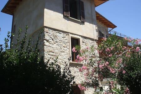 Il Ramo d'ulivo - Lunigiana - Orturano - Wohnung