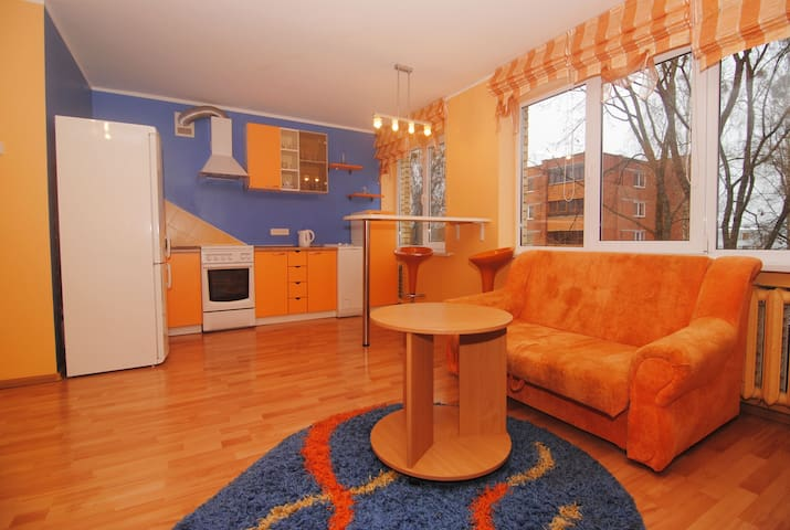 Apartments for rent in the center of Druskininkai - Druskininkai - Guest suite