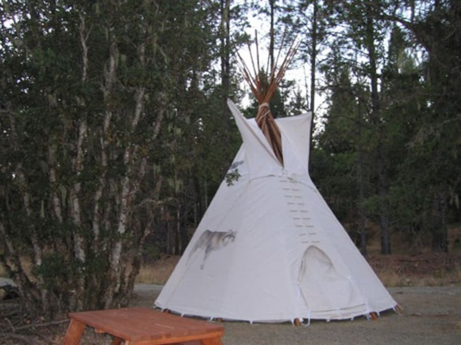 Our Wolf TiPi is very clan with paver stone floors and authentic Indian decorations. Remember that, you are still camping:-)