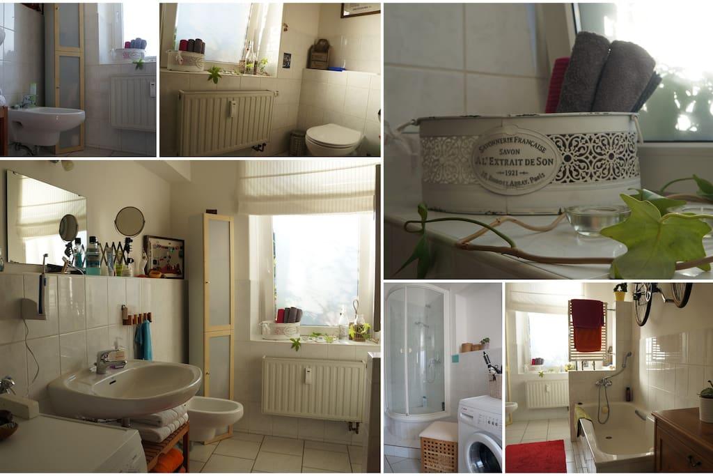 Badezimmer mit Dusche, Badewanne und Bidet :)