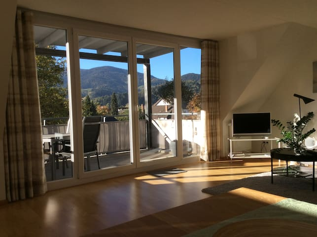 Maisonette-Apartment 125m² (Freiburg 8 km)