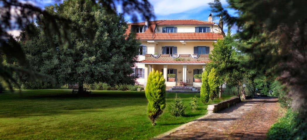 Villa d'Este -B&B- Moon Room - Vejano - Bed & Breakfast