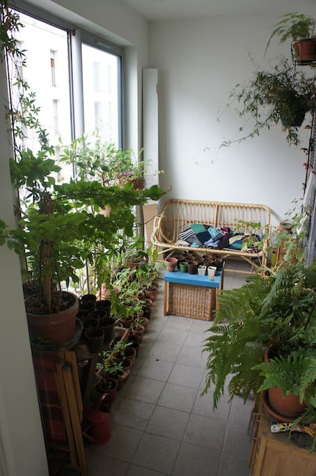 The patio accessible directly form the room