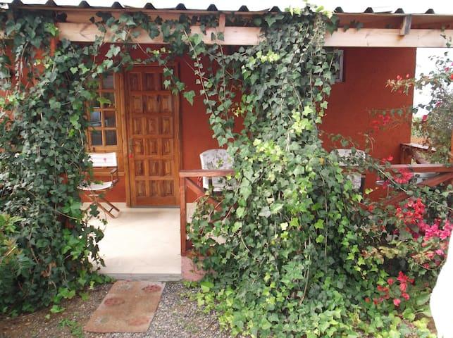 Casa Heidi - Guía de Isora - Dom
