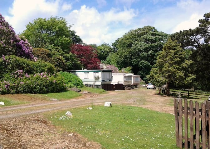 6 Berth Static Caravan in Cornwall - Cornwall, UK - Other