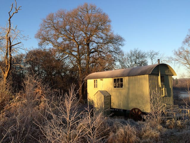 Shepherds Hut Woodlands Hide - Petworth - Stråhytte