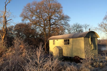 Isolated Shepherds Hut Woodlands Hide