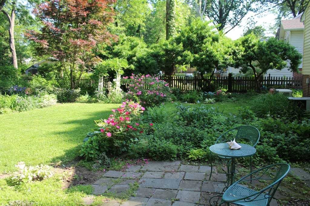 View of backyard from Sunroom