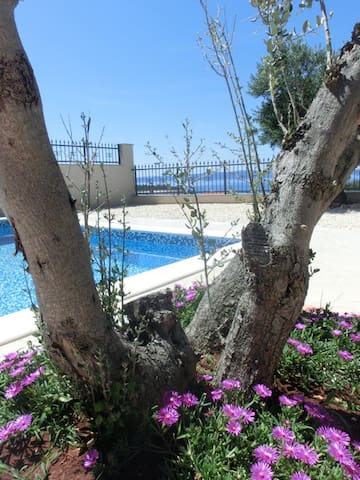 Luxury villa with pool and seaview - Makarska - Villa