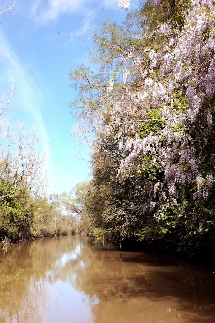 Spring colours in the Delta